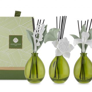Hysses Vase Diffuser - These ceramic works of art from Hysses are more than just pretty accessories. Each adds a touch of sophistication to the room as it scents the surrounding space with its own delightful essential oil concoction. Choose from three designs: Lily, Lotus, and Bleeding Heart.