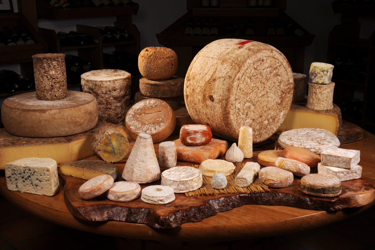 Love Cheese? You Need To Read This