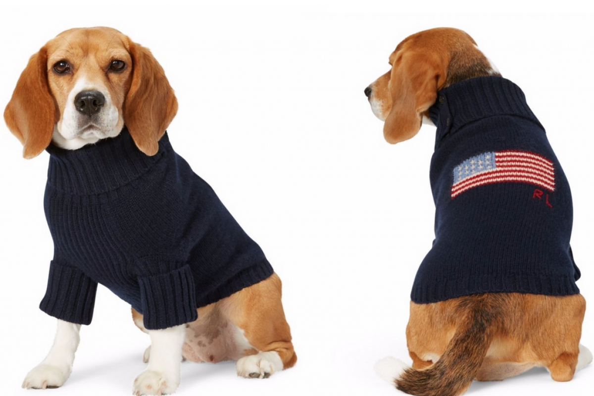 We Predict Doggy Fashion is In