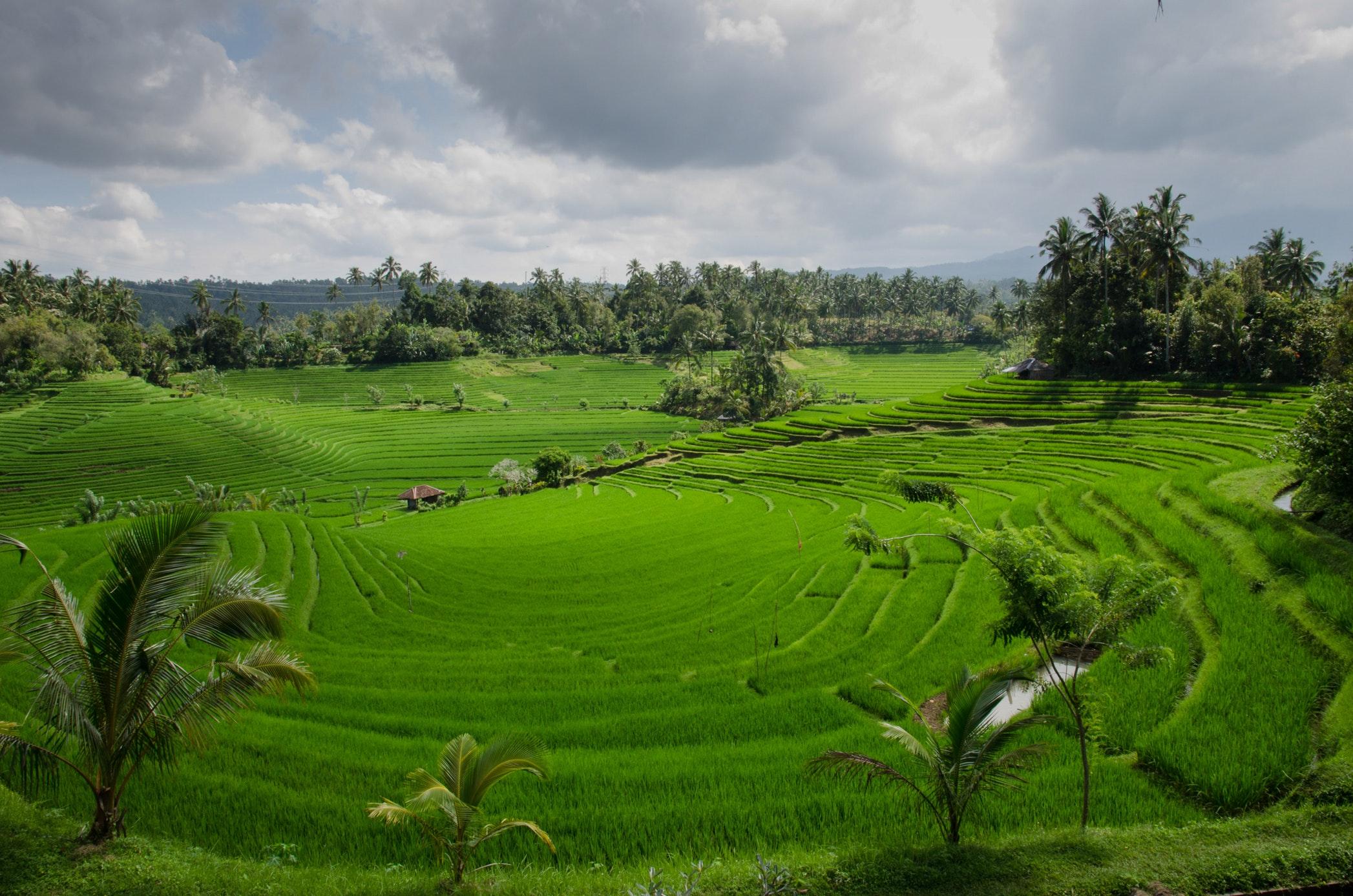 Southeast Asian destinations for short weekend getaways: Bali
