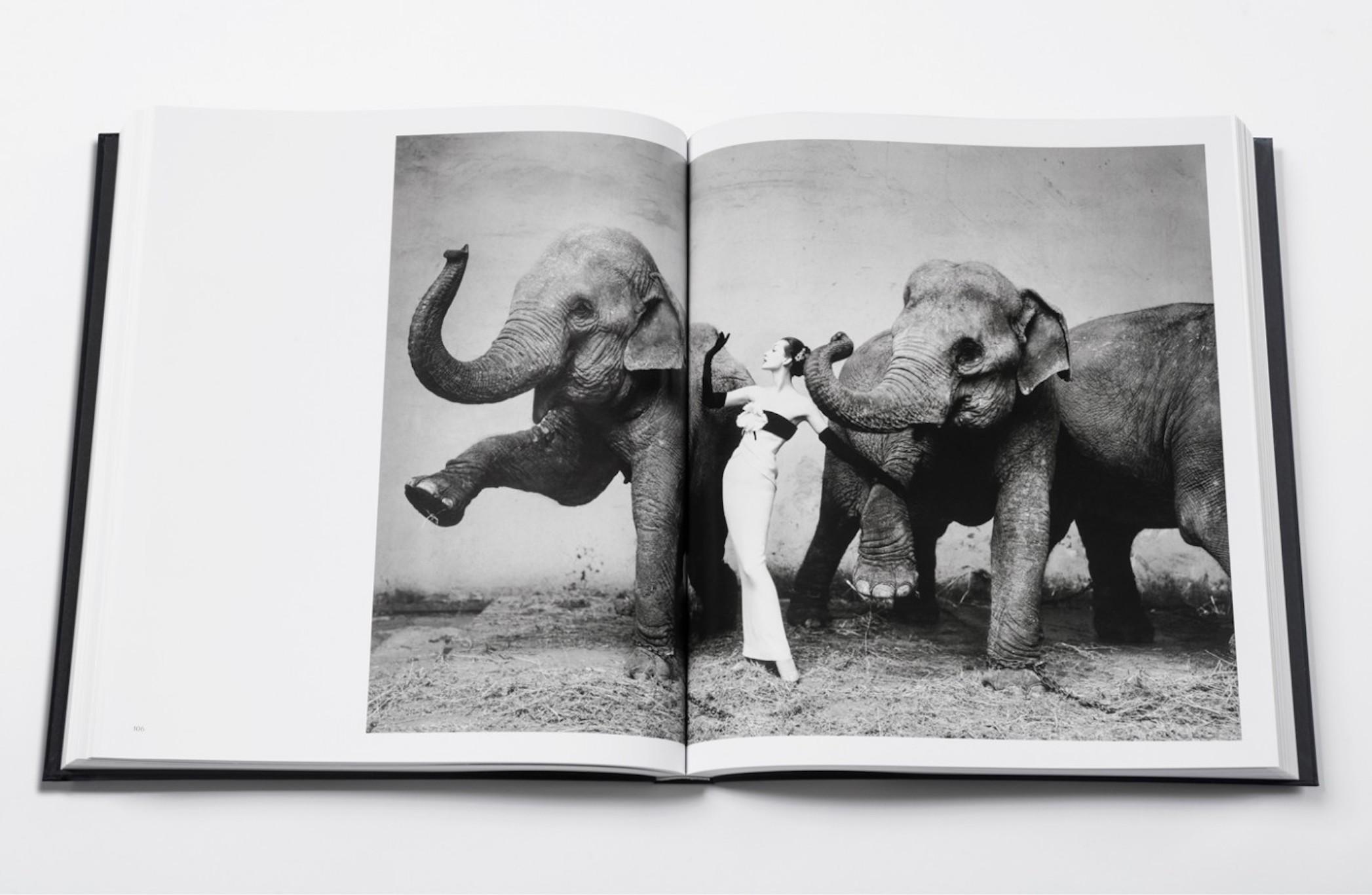 Fashion photography books: Dior by Avedon
