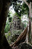 RUINS AT ANGKOR; PHOTO: JON WALL