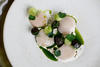 SCALLOPS, CUCUMBER AND DILLASH