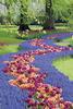 Keukenhof Tulip Gardens, Holland