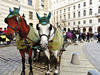 Horse carriage ride through Vienna