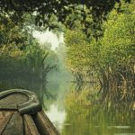 Canals-of-Sundarban-in-South-western-Bangladesh-Getty-Images1
