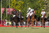 The brothers (in white) playing the 2013 Argentine Polo Open