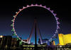 The High Roller is one of the few things in Vegas that the entire family can enjoy together.
