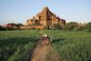 Dhammayangyi Pagoda is Bagan's widest temple