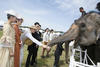 Erik Andersson and Hendrick's Gin Victorian Troop feeds elephant