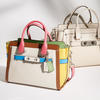 Rainbow Colorblock Leather Coach Swagger 27