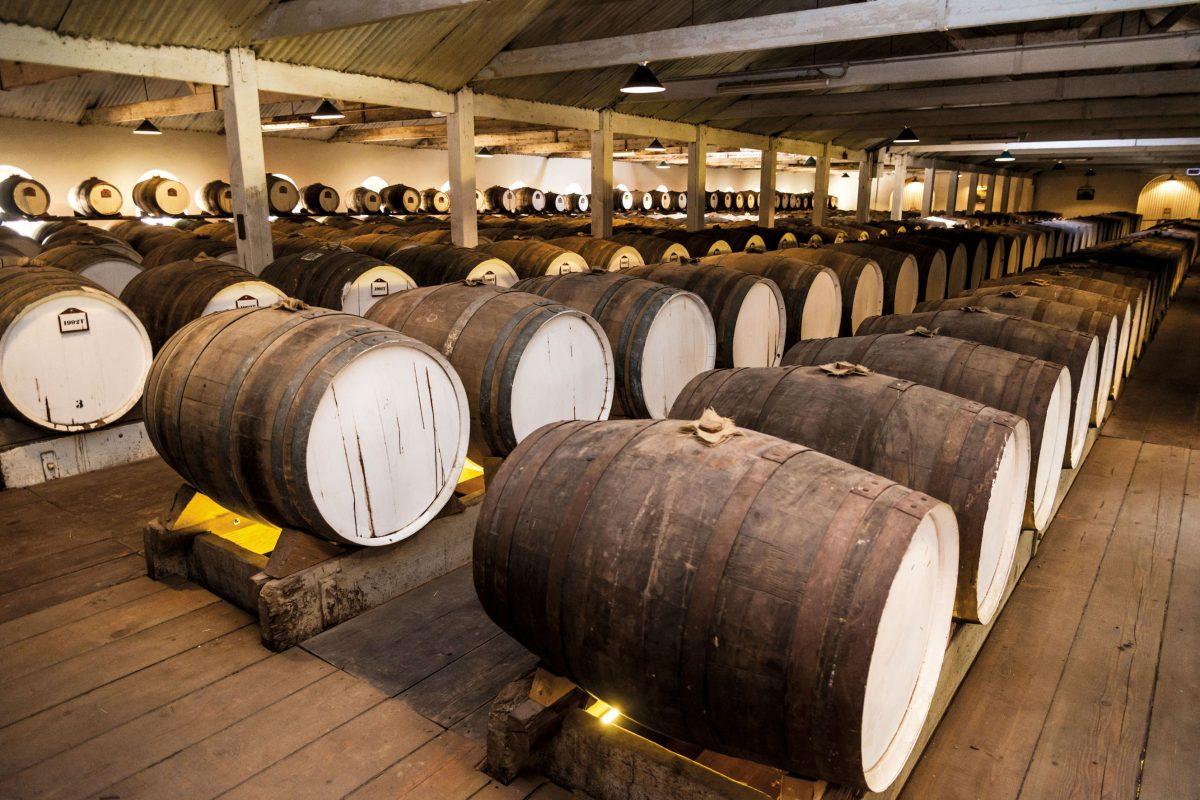 South Australia: A Wine Lover's Paradise