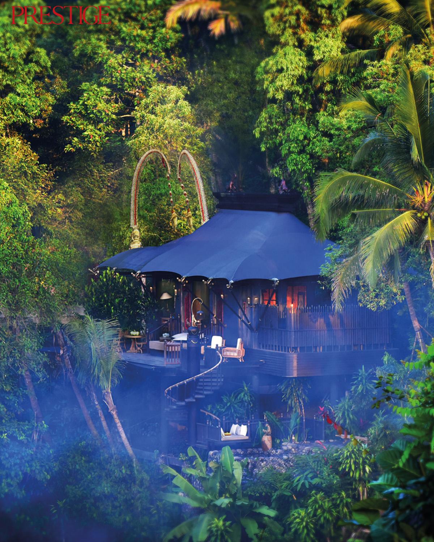 6 Multisensory Experiences That Await You in Capella Ubud, Bali
