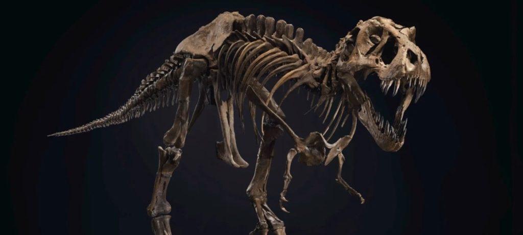 t-rex auction