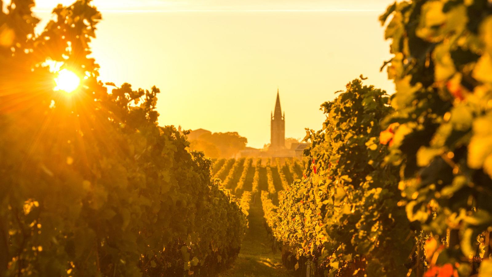Best of Wine: The Top 10 Bordeaux Bottles of 2020