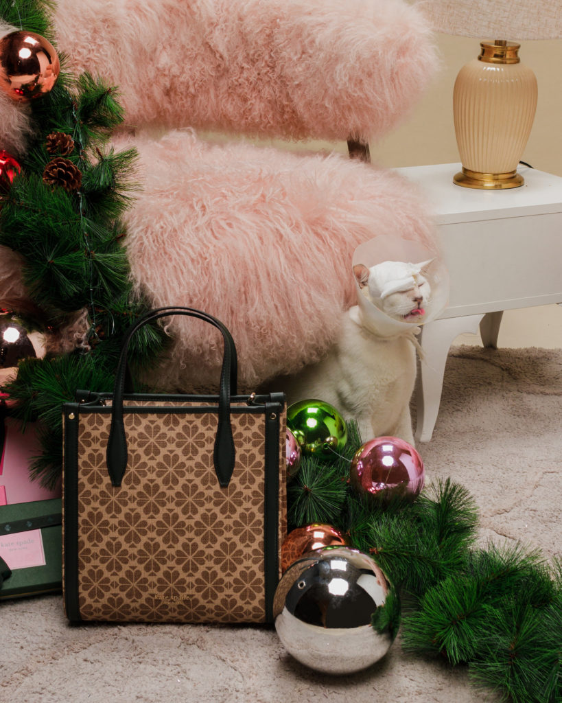 Kate Spade x Allergic Rescuers KL