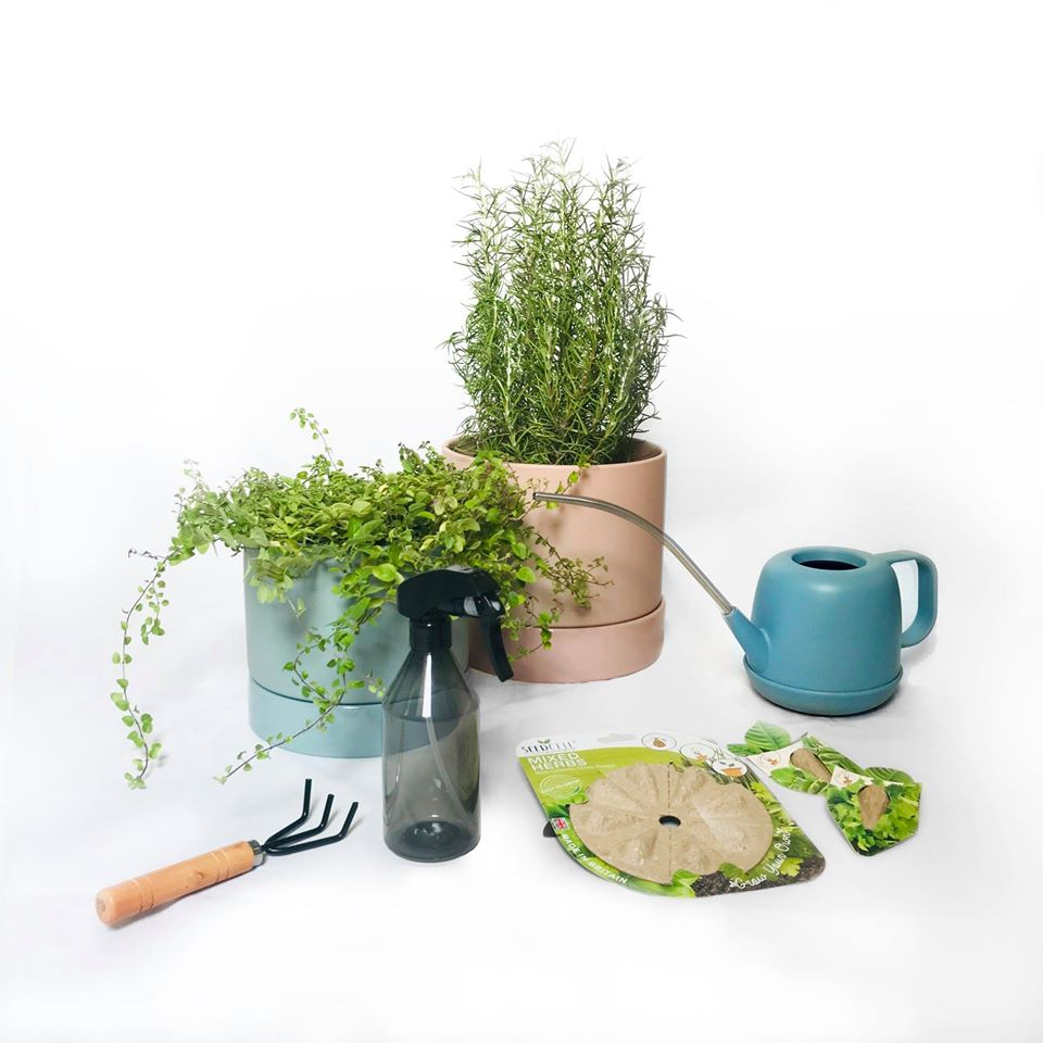 urban gardening kits crops and co