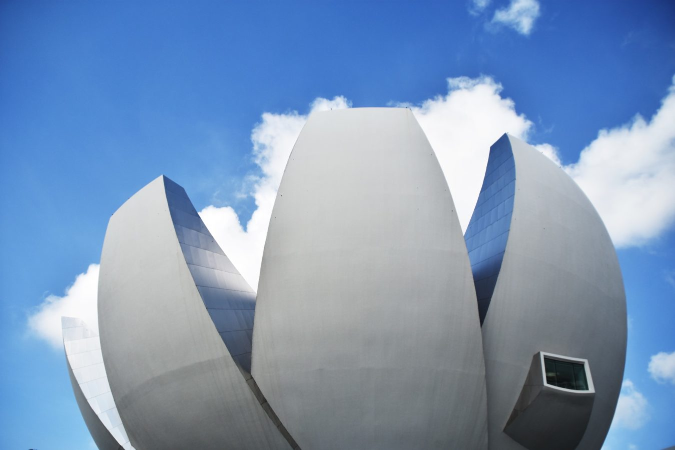 Take a virtual tour of the ArtScience Museum in Singapore