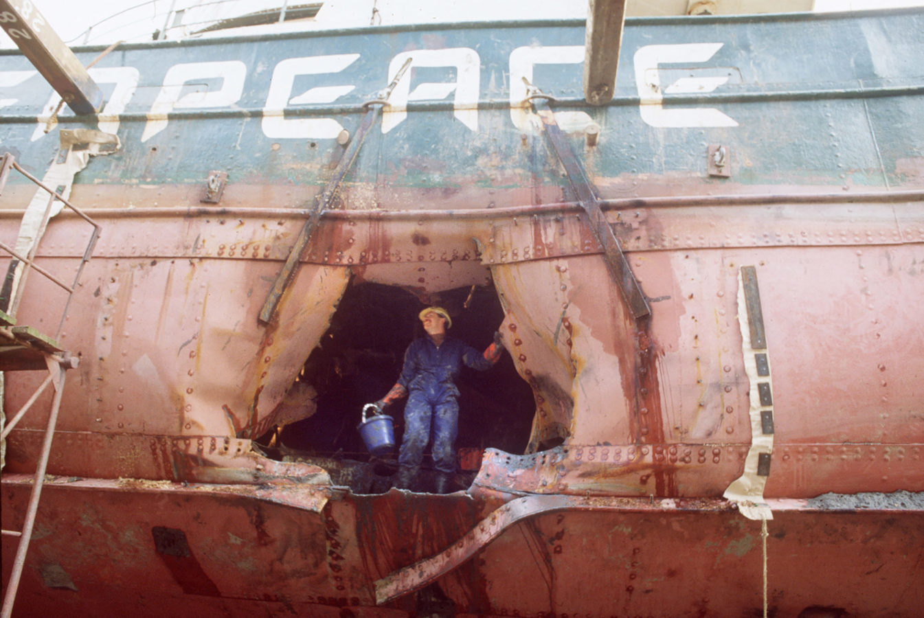Greenpeace: An 'insane' vision that took flight 50 years ago