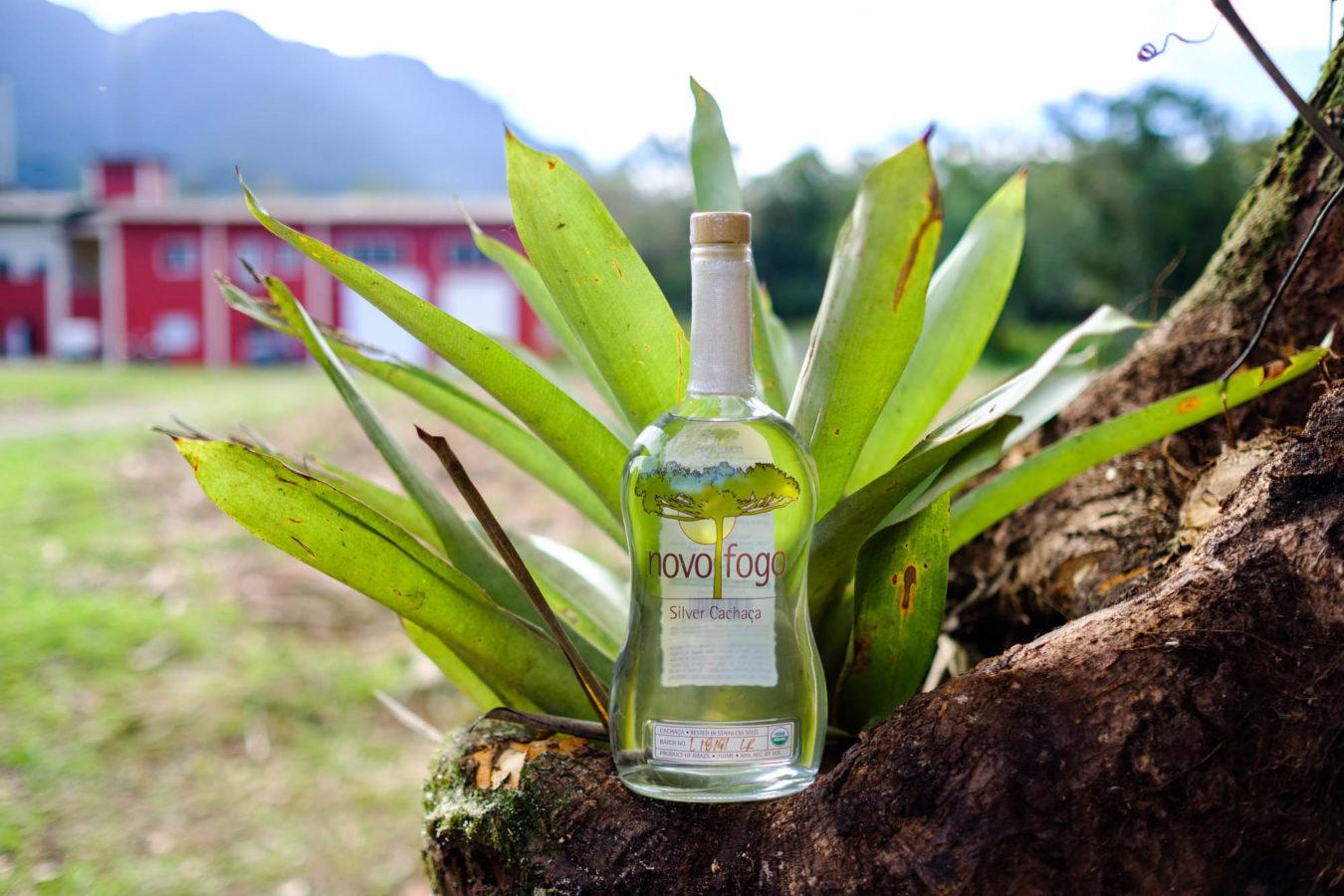 Novo Fogo: a carbon-negative cachaça that's also delicious