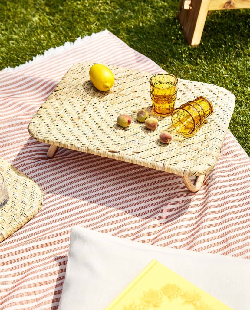 Zara picnic accessories