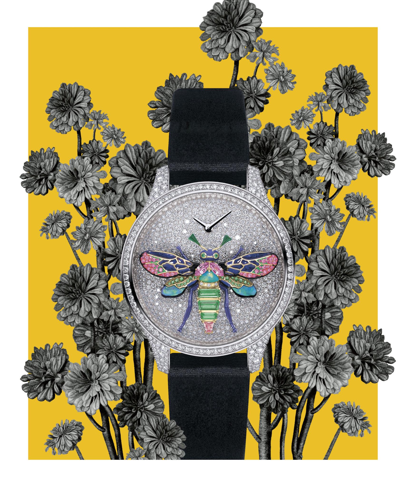 dior luxury timepieces
