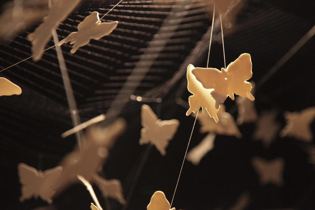 Butterflies by Nino Sarabutra