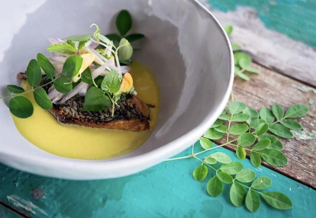 Chada Culinary